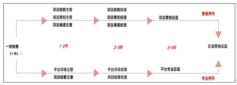 发展路径.png